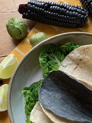 Tacos aus buntem Mais