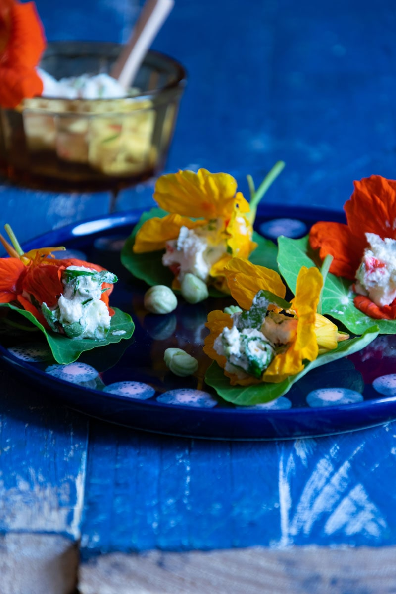 Kapuzinerkresse Blüten